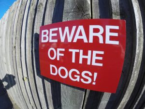 BEWARE of THE DOGS, Sign