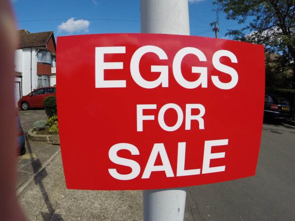 EGGS FOR SALE, Sign